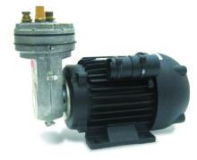 Pumps, Diaphragm
