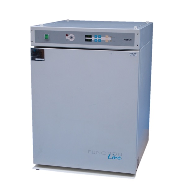 L11304 Heraeus BB16 Function Line CO2 incubator
